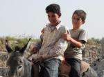 Boys on a Donkey at Apamea