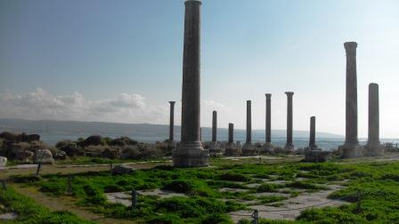 The seaside roman site at Tyre