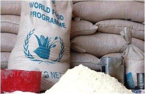wfp-flour