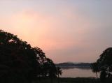 Assam (2)